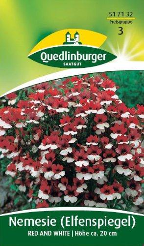Nemesie (Elfenspiegel), Red and White
