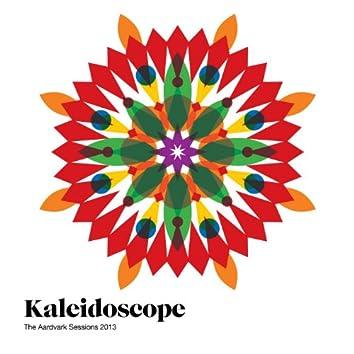 The Aardvark Sessions 2013: Kaleidoscope