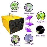 Sawera Generador de Ozono portátil O3 Generador de Ozono purificador de Aire Ozono Máquina de Ozono + Acero Inoxidable, para Hogar, Oficina, Barco, Automóvil, Hotel y Granja