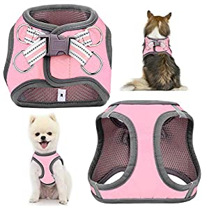JSXD Small Dog Harness,Puppy Harness,Adjustable Leash and Collar Set for Small Dogs,Step-in Dog Harness ,3M Reflective Pet Dog Vest for Small Medium Puppy
