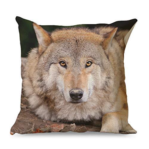 GROOMY Almohada, Wolf Animal Light Bright Colors Funda de almohada para dormitorio Con cremallera para sofá Dormitorio Coche Estilo Casual Blanco 18x18 pulgadas