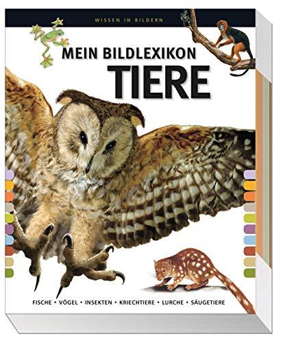 Mein großes Bildlexikon Tiere: Fische, Vögel, Insekten, Kriechtiere, Lurche, Säugetiere.