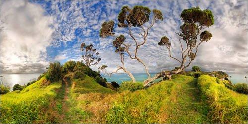 Posterlounge Acrylglasbild 80 x 40 cm: Russell - Neuseeland - Bay of Island von Michael Rucker - Wandbild, Acryl Glasbild, Druck auf Acryl Glas Bild