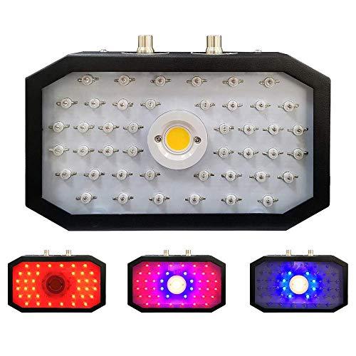 DOOOT LED Grow Lampe 1000W COB Pflanzenlampe Vollspektrum LED Grow Light High Power Doppelschalter Pflanzenlicht Für Zimmerpflanzen Gemüse Und Blumen