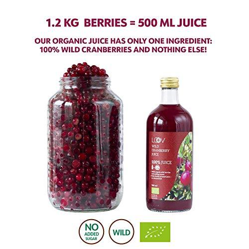 Bio Wild Cranberrysaft - 9