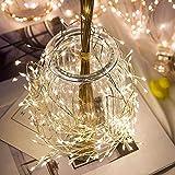 GAFAGAFA led strips 2m 100leds Tira de luz Alambre de cobre LED Cadena de luces Petardo Guirnalda de hadas Luz para Navidad Ventana Fiesta de bodas Blanco