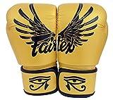 Fairtex Guantes de Muay Thai BGV1tamaño: 10121416oz. Entrenamiento de Boxeo Multiusos Guantes de Kick Boxing MMA K1(Falcon, 16oz) por Fairtex
