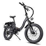 Mukkpet Rattan LM-500W/750W LF-500W/750W 20Inch Folding Electric Bike 48V 13AH Removable Lithium Battery I-PAS 7 Speed Adult Bicycle 500W 28MPH 750W 32MPH Electirc Bicycle