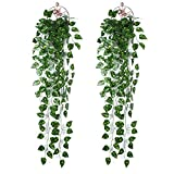 IVYSHION Artificial Hanging Plant 1/2 Pack Trailing Ivy Plants Vine Plant Leaves Fake Hanging Ivy Vine Plastic Fake Greenery Drooping Plant for Wedding Party Garden Wall Hanging Pot Basket Decoration (Green Dill-1, 2 PCS)