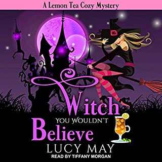 Witch You Wouldn't Believe audiobook cover art