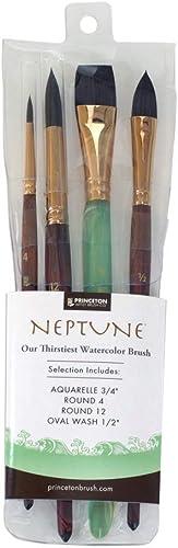 estar en gran demanda Princeton Artist Brush Neptune, Brushes for WaterColor Series 4750, 4750, 4750, 4 Piece Professional Set 300  mas preferencial