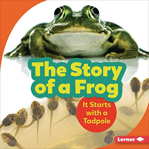 The Story of a Frog cover art
