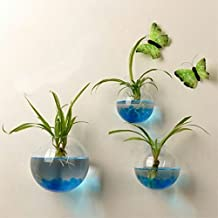 Faroot 2017 New Hanging Flower Pot Glass Ball Vase Terrarium Wall Fish Tank Aquarium Container