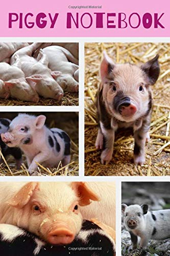 Piggy Notebook: The Perfect Notebook For The Piglet Lover...