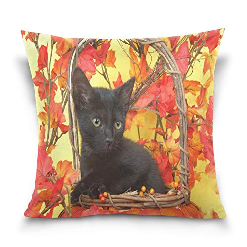lucies Throw Pillow Case Decorative Cushion Cover Square Pillowcase, Black Cat Kitten in Wicker Pumpkin Basket Sofa Bed Pillow Case Cover(18x18inch) Twin Sides