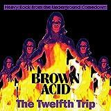 Brown Acid - The Twelfth Trip / Various