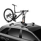 Thule ThruRide Roof Bike Rack , Black