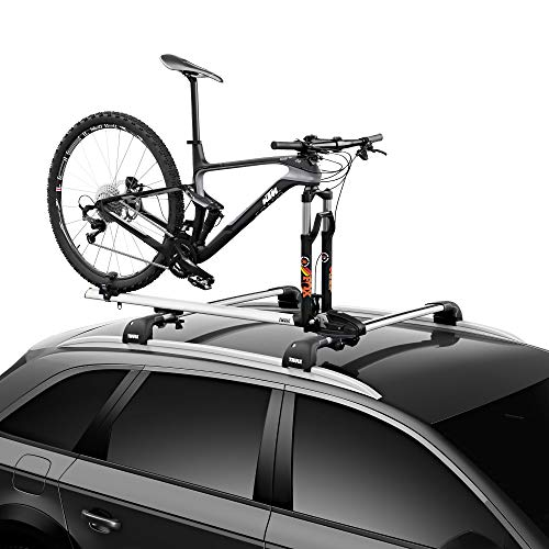 Thule ThruRide Roof Bike Rack , Black
