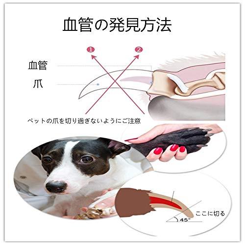た 切り の すぎ 犬 爪