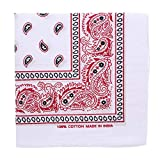 White Bandana with Colorful Paisley Print-Red