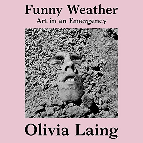 Funny Weather audiobook cover art