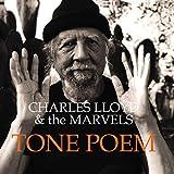 Tone Poems [12 inch Analog]