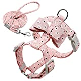 MMWW Colorful Print Dog Harness With Leash Nylon Dogs Harness And Walking Leash