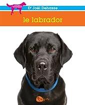 Le Labrador de Joël Dehasse