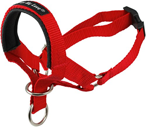 Dog Head Collar Halter Red 6 Sizes (S: 6.5