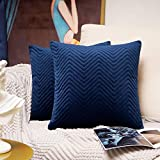 Homiin Navy Blue Throw Pillow Covers, 18 x 18 inch Decorative Pillow Covers Set of 2, Premium Quality Thick Soft Velvet Fall Pillow Covers for Couch Bed Sofa, New-Season Luxury Design Cushion Covers