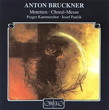 Bruckner: Motets & Choral Music