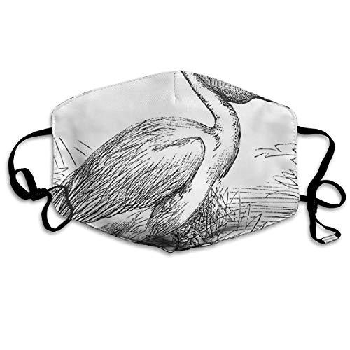 Gegraveerde Illustratie Van Een Pelikaan Vogel Zoologie Thema Natuur Avian AnimalPrinting Veiligheid Mond Cover voor Volwassenen