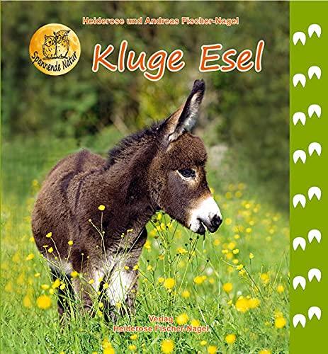 Kluge Esel