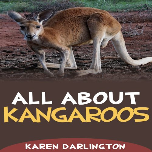 All About Kangaroos audiobook cover art