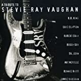 Tribute to Stevie Ray Vaughan - Tribute to Stevie Ray Vaugh