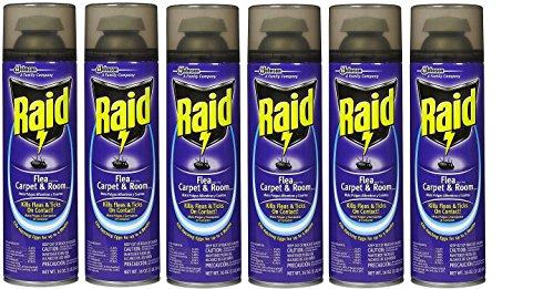 Raid Flea Killer Carpet and Room Spray, 16 OZ (Pack - 6)