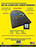 ERGO21 Lumbar Support Cushion - Better Than Gel, Foam, and Air!...