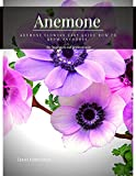 Anemone: Anemone Flowers Easy Guide How tо Grow Anemones (English Edition)