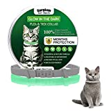 Cat Flea and Tick Collar, Luminous Safety Glow Flea Tick Natural Treatment Flea and Tick Collar, 8 Months Effective Protection Waterproof Adjustable for All Sized Kittens Cats and Pets-1 Pack