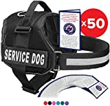Service Dog Vest With Hook and Loop Straps and Handle - Harness is Available in 8 Sizes From XXXS to XXL - Service Dog Harness Features Reflective Patch and Comfortable Mesh Design (Blue, Large)