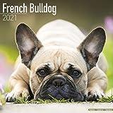 French Bulldog Calendar - Dog Breed Calendars - 2020 - 2021 wall calendars - 16 Month by Avonside