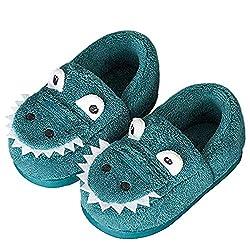 2. JACKSHIBO Fur Lined Dinosaur House Slippers