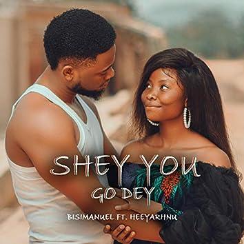 Shey You Go Dey (feat. Heeyarhnu)