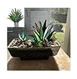 QPYC Creative Suncatcher Stained Agave Plant, Mini Artificial Agave Plants Decor, Stained Glass Art Ornament Decoration for Home Garden Yard Outdoor Front Door Windowsill (03)