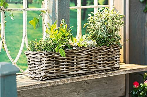 Dekoleidenschaft Pflanzkasten Koboo Grey aus Rattan, grau, 60 cm lang, Blumenkasten, Pflanzkasten, Flechtkorb