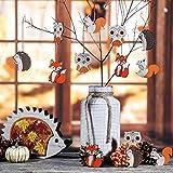 VALERY MADELYN Holz Deko Hänger Herbst Dekoration Figuren 24er Set 4.5-5.5cm Igel Eule Fuchs Eichhörnchen Herstdeko Bunte bemalt Fensterhänger mit Schnur zum Aufhängen Erntedankfest Herbst Dekoration - 5