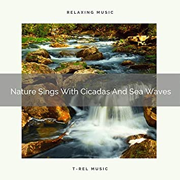 Nature Sings With Cicadas And Sea Waves