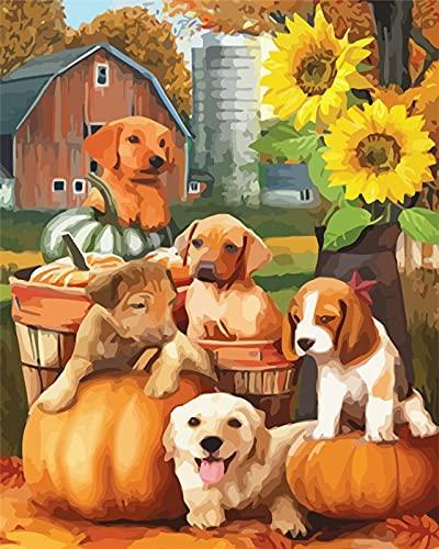 Pintura por números perro animal pintado a mano pintura arte regalo DIY imágenes por número kits de calabaza para regalo de Halloween A13 40x50cm