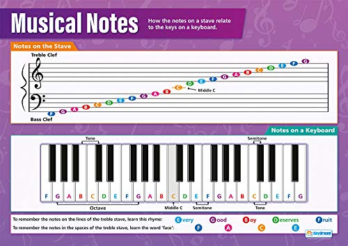 Musical Notes | Music Posters | Gloss Paper Measuring 33� x 23.5� | Music Charts for The Classroom | Education Charts by Daydream Education