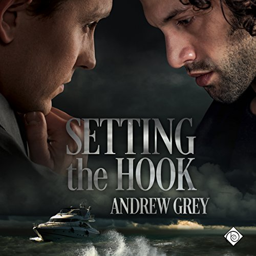 Setting the Hook audiobook cover art